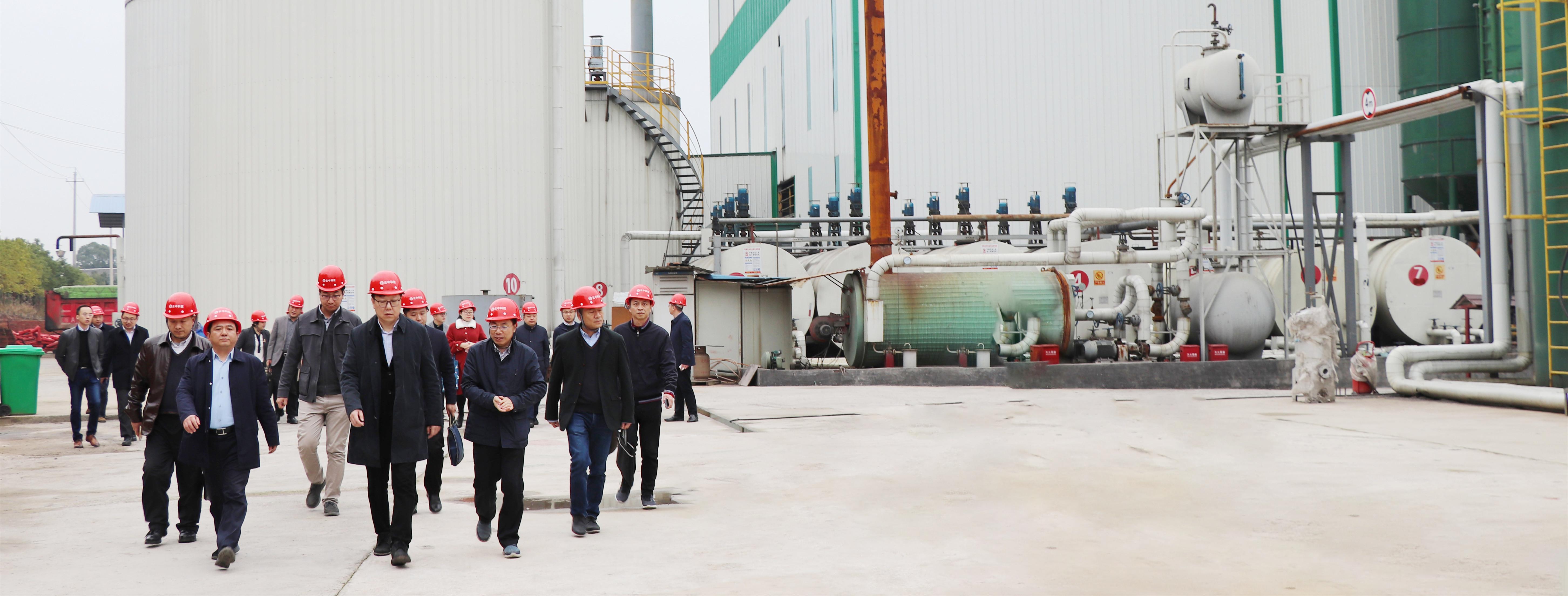 2019年3月13日,湖南省住建厅鹿山厅长莅临mg4355科技建筑垃圾再生基地考察指导